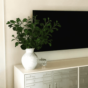 large decorative plant sitting on TV stand
